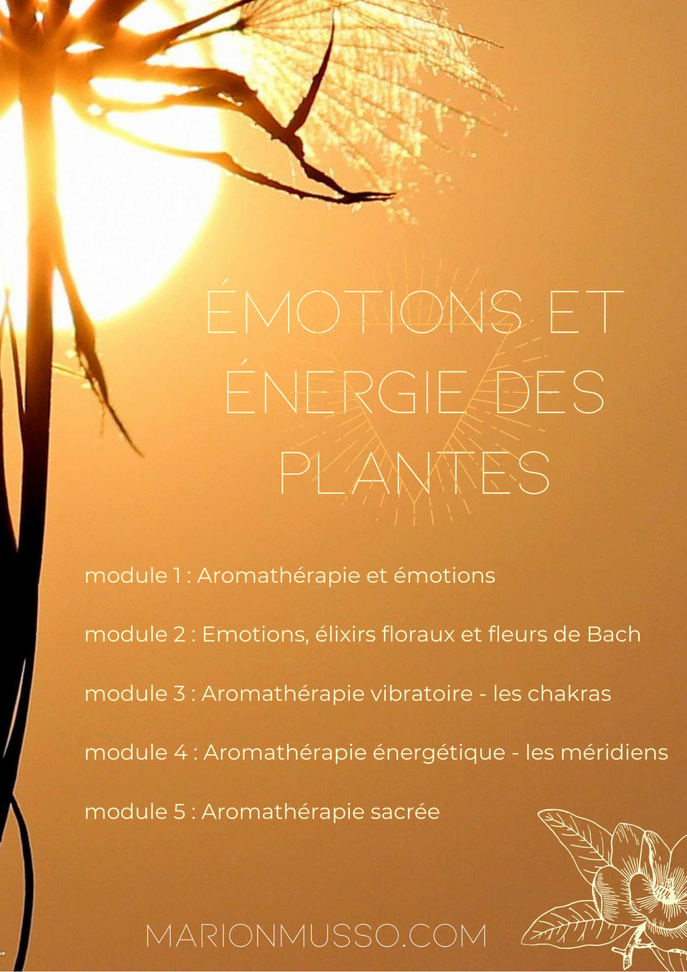 Affiches atelirs